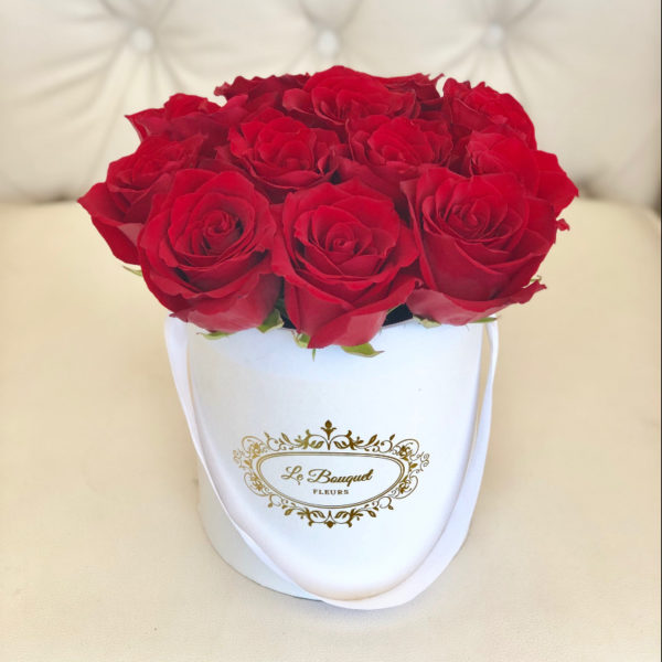 Orlando Florida Roses