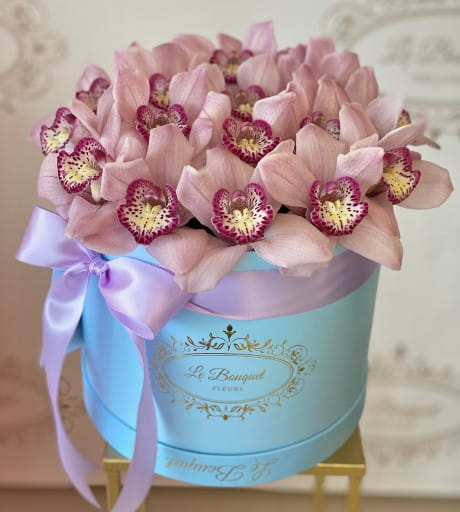 Orchid Flower Delivery Orlando