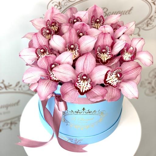 Orlando Orchid Delivery